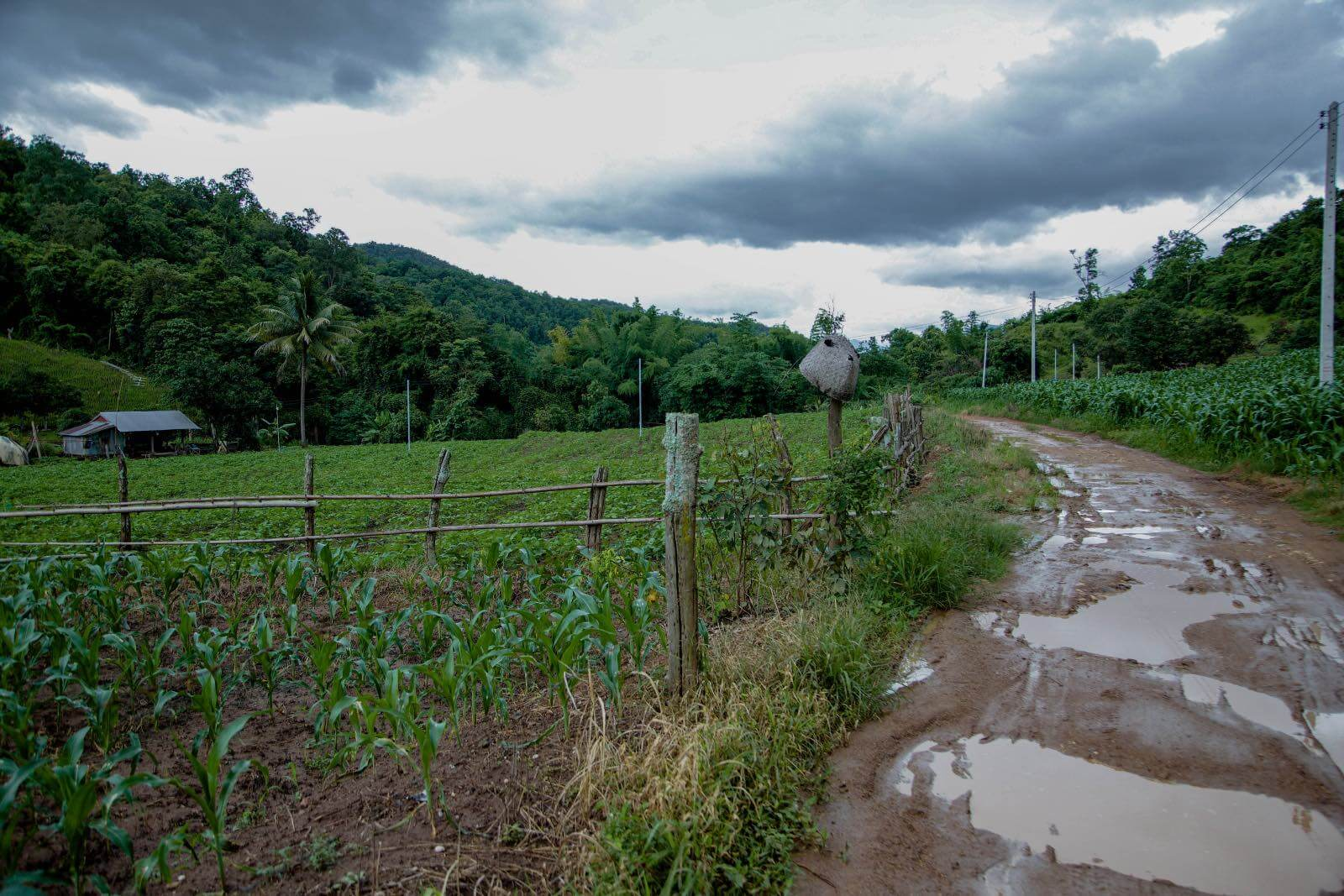 Muddy road in Pai, Thailand on the way to Chiang Mai