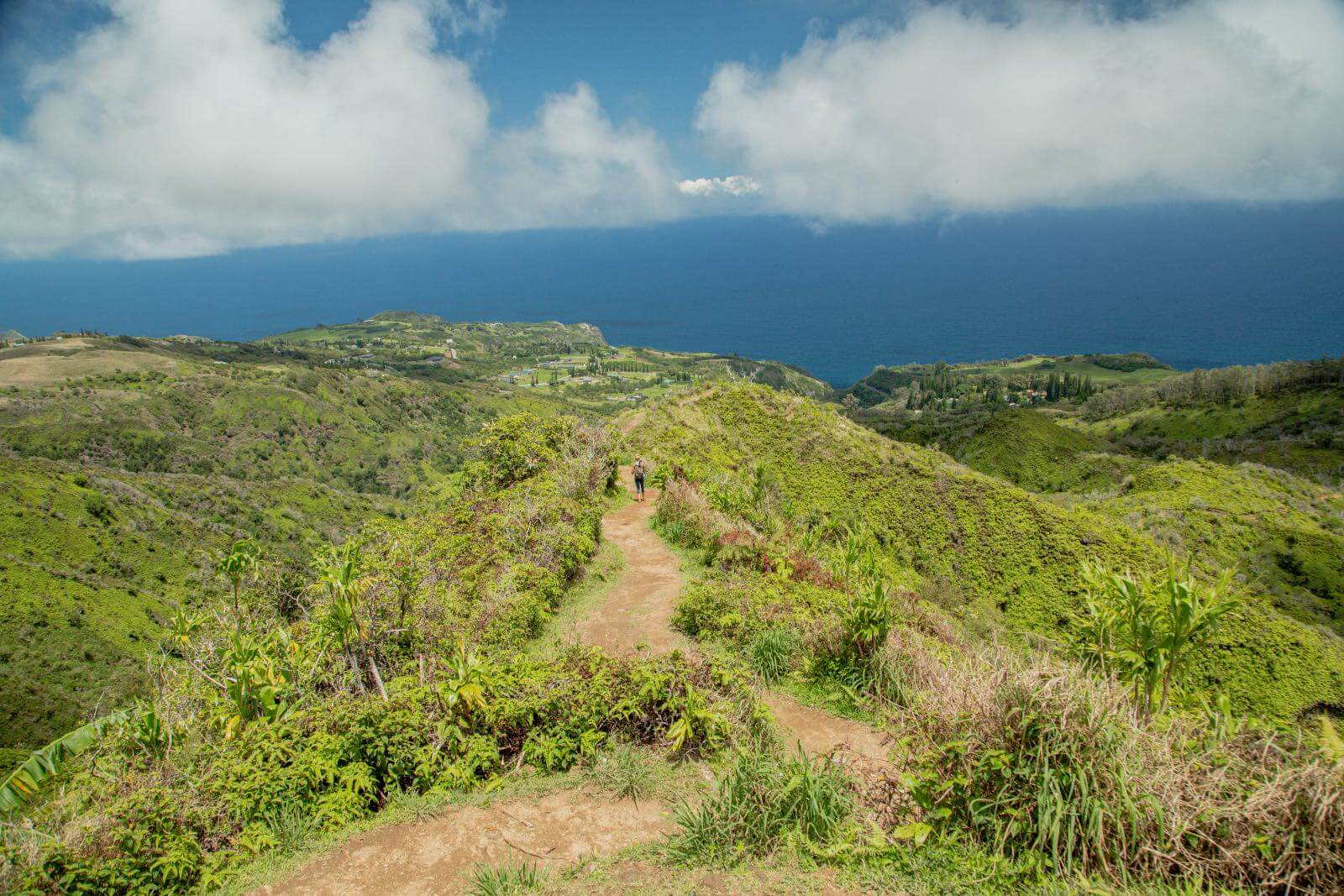 Views of the ocean and West Maui mountains on the Waihee Ridge Trail'