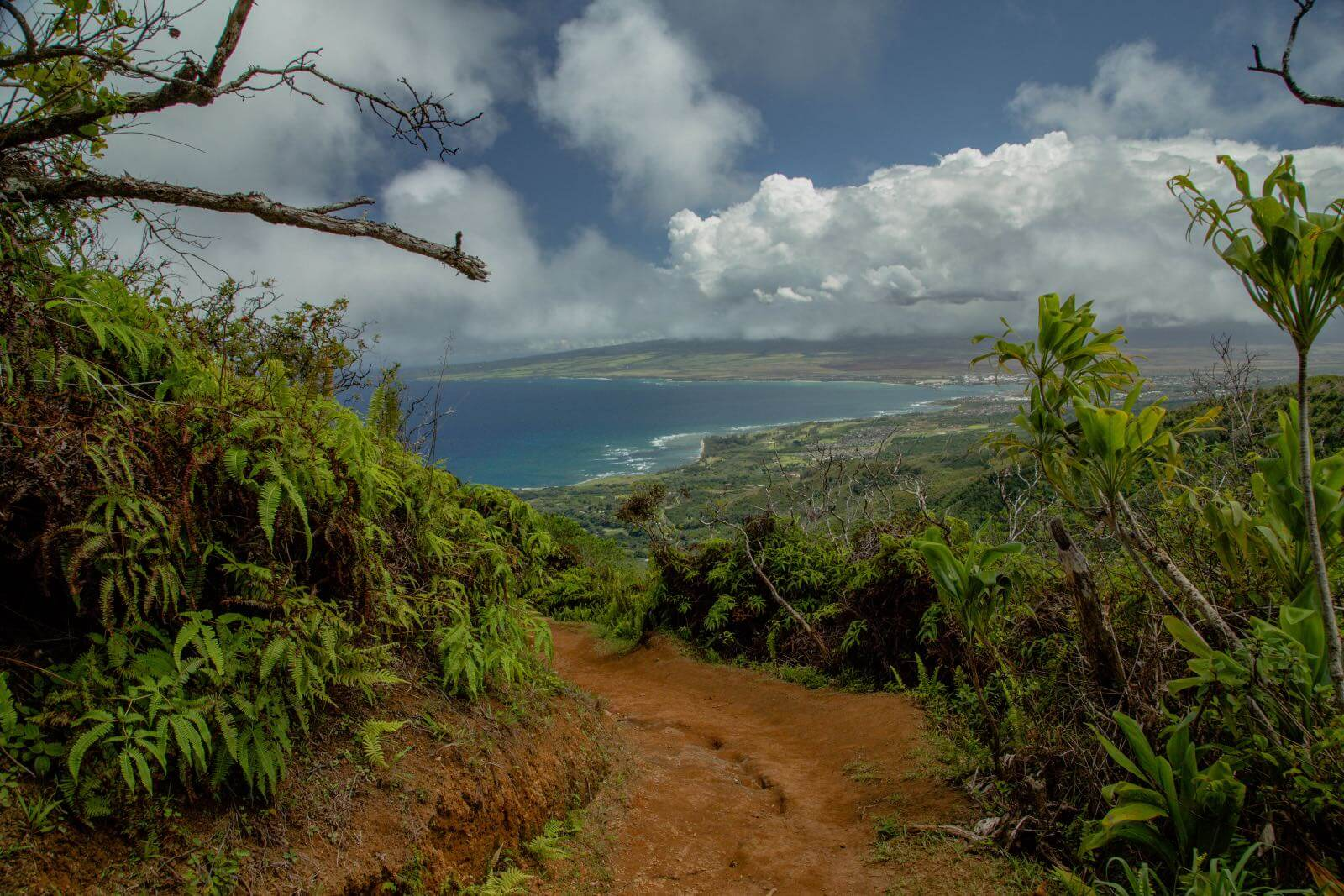 The Waihee Ridge Trail on Maui HI
