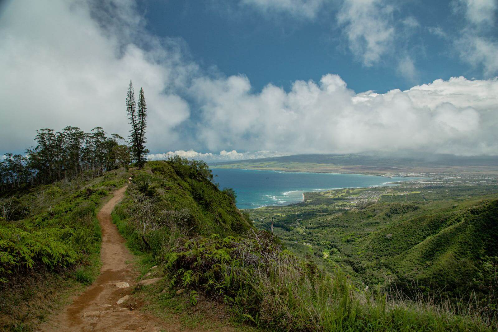 The Ridge Trail with ocean Views