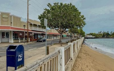 A Lahaina, Maui Travel Guide