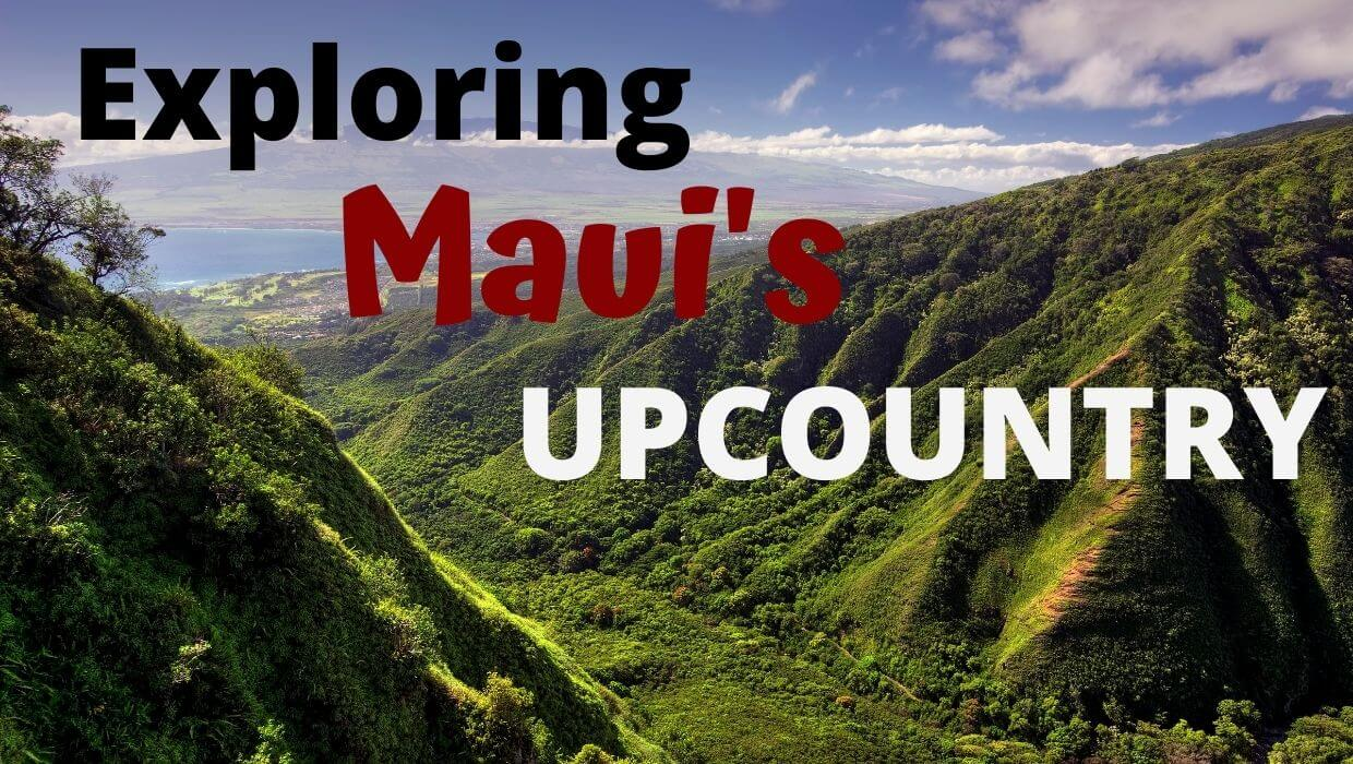 Ways to explore Upcountry Maui