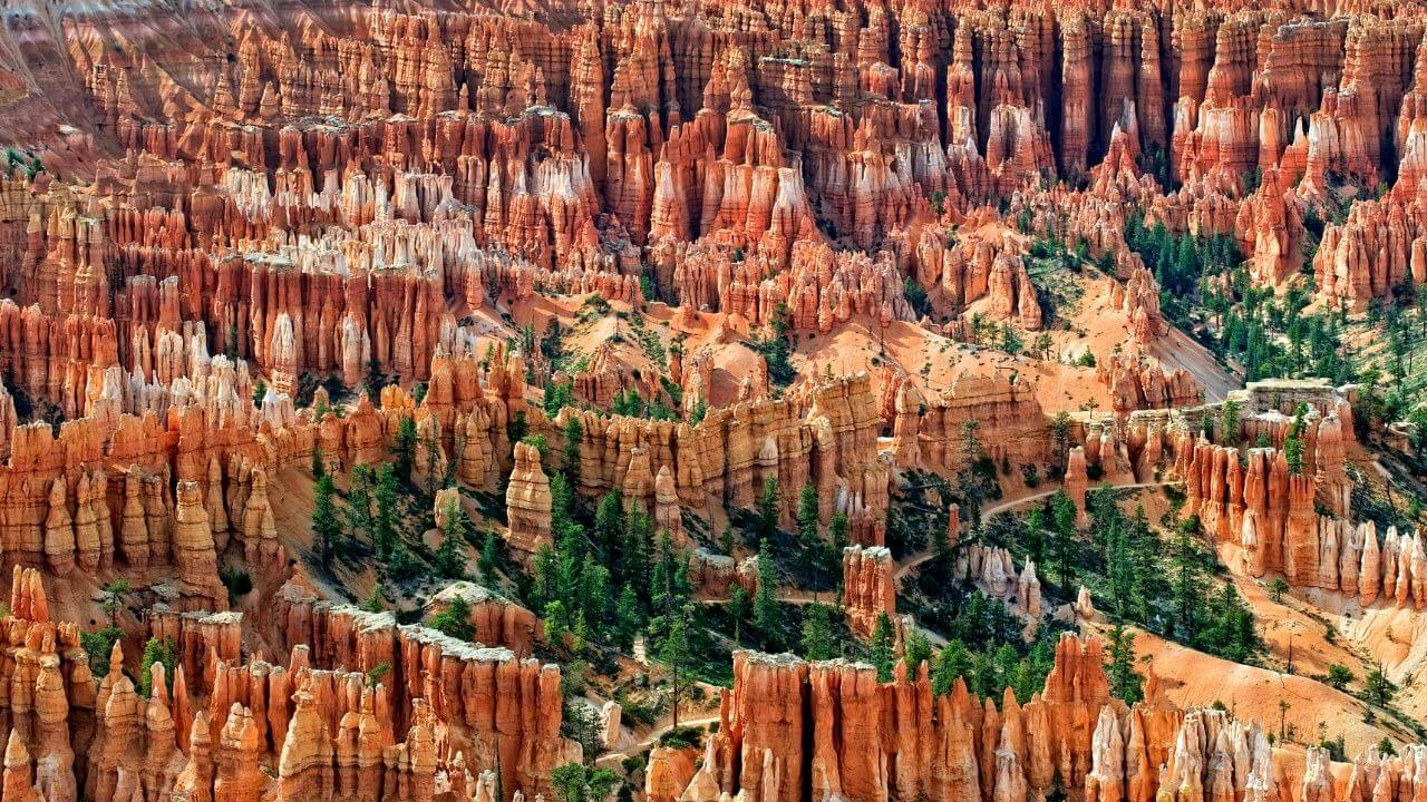 Outlook over Bryce Canyon ampitheater