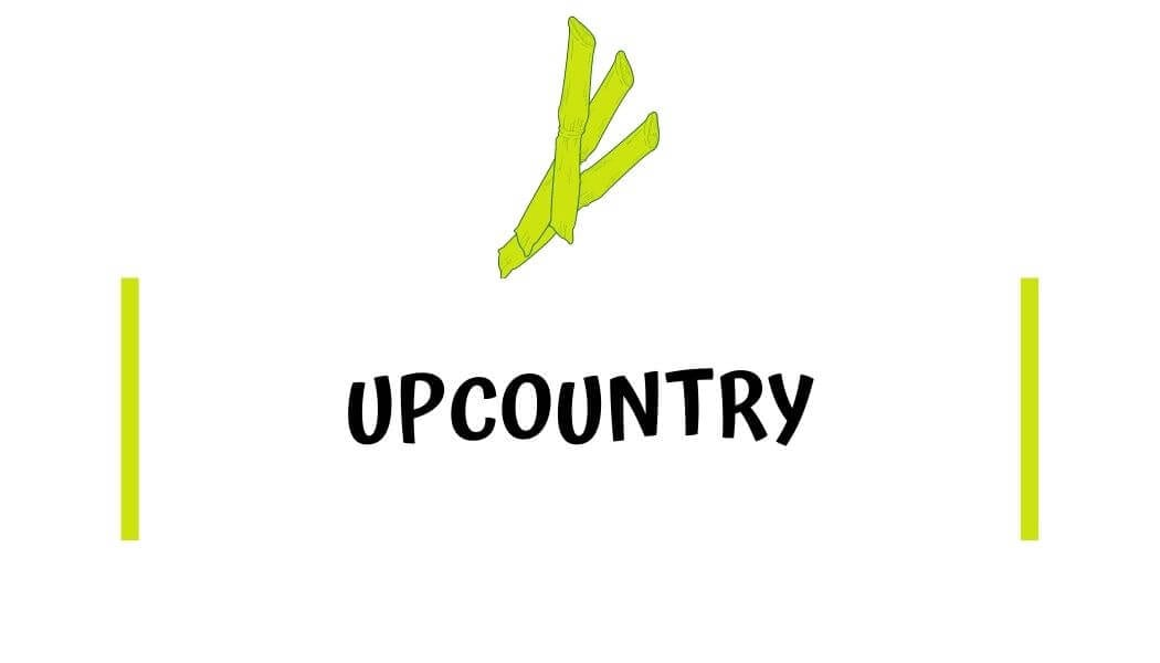 Upcountry Travel Guides with I'm Jess Traveling