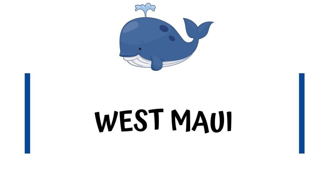 Airbnb condos in West Maui