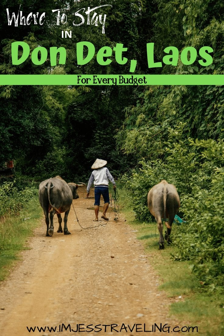 The best places to stay in Don Det Laos