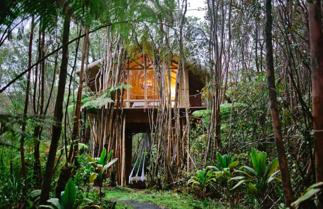 Tropical Treehouse Airbnb in Hawaii