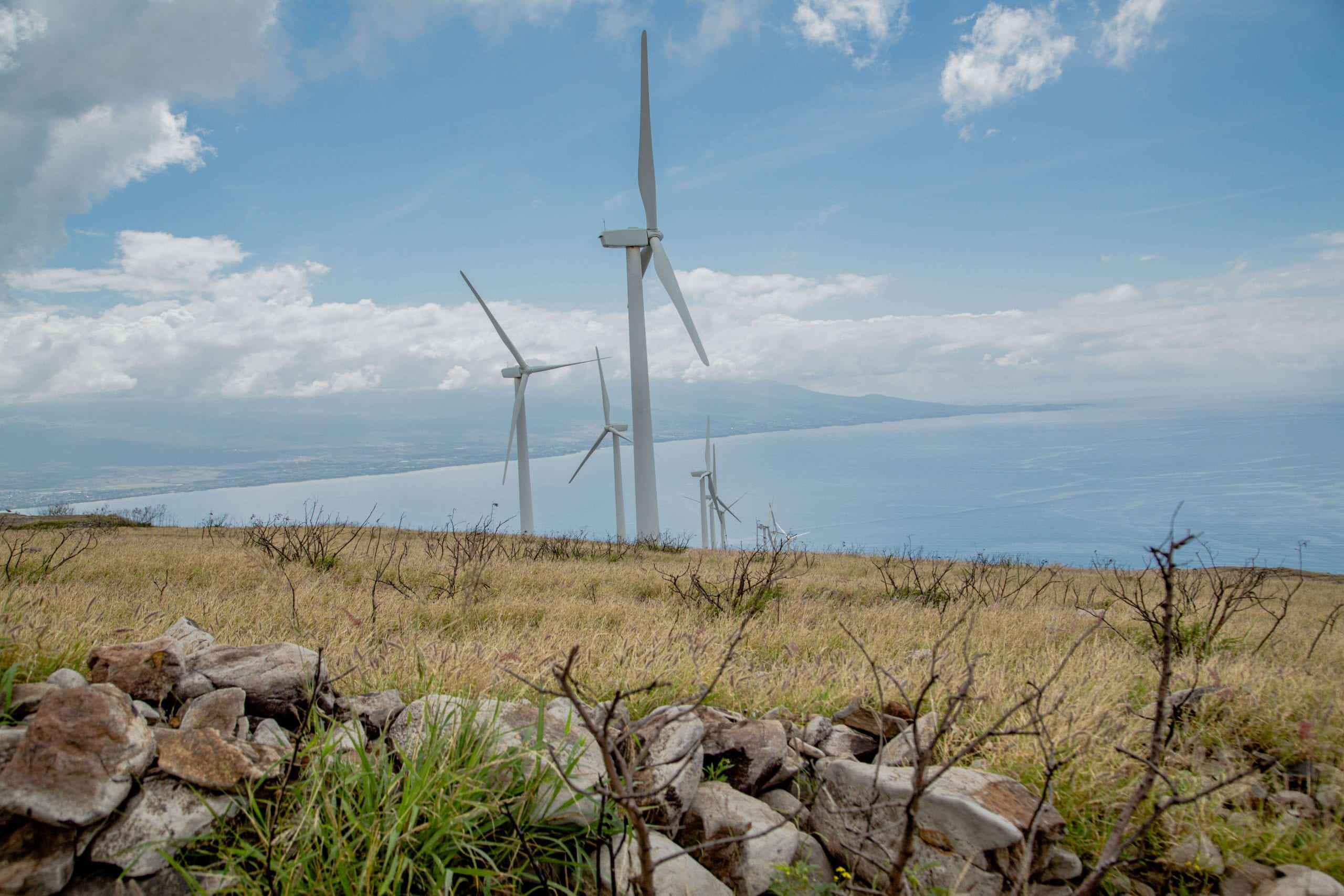 The Windmills of the Pali hIke