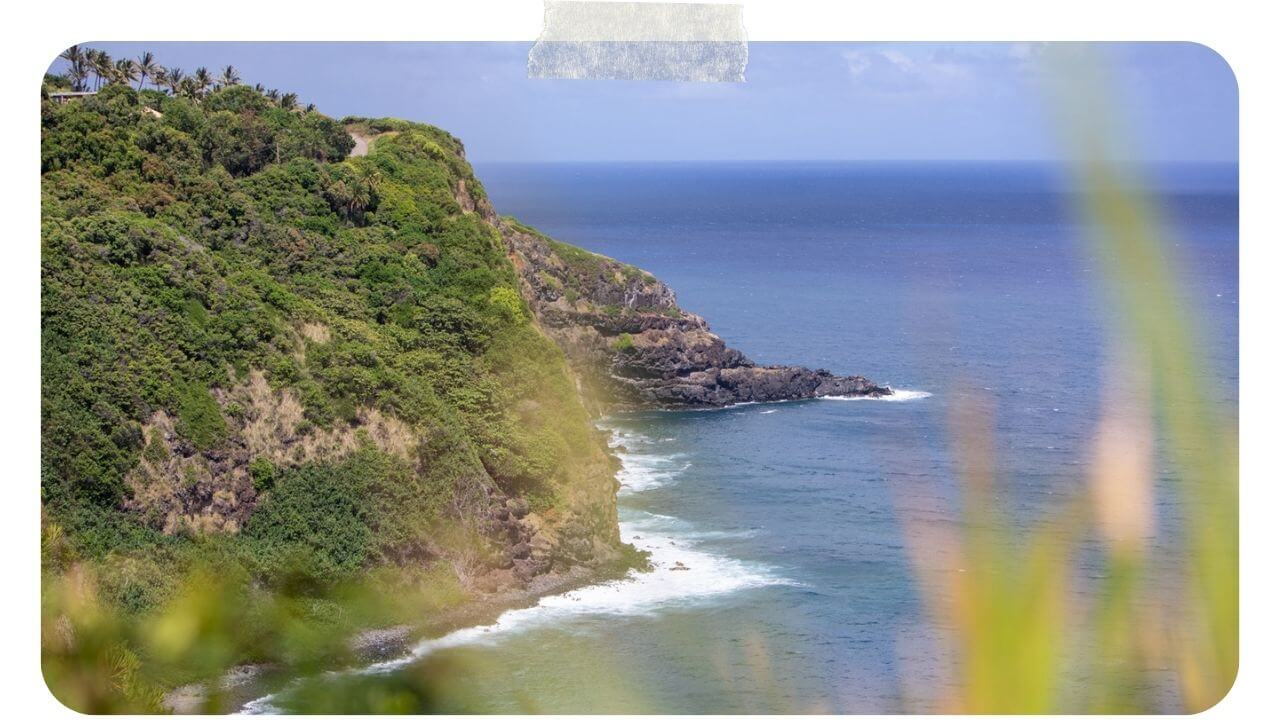 Views from the back way to Hana