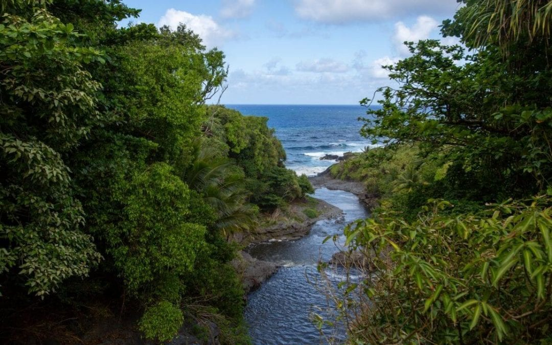 28 Things to do in Maui on a Budget